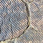Fossilised Ripples by Michael John