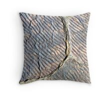 Fossilised Ripples Throw Pillow