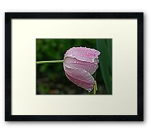 Water Weight Framed Print