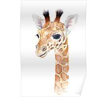 Giraffe Watercolor Baby Animal Poster
