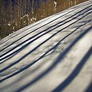Mountain Lines by Gene Praag