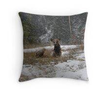 Stormn' Elk Throw Pillow