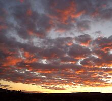 Desert Sunset by JoyceIone
