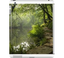 A Light unto my path iPad Case/Skin