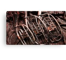 German Horns Canvas Print