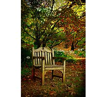 The Chair ... Mt Wilson in Autumn Photographic Print