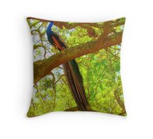 Peacock Sitting In An Oak Tree Throw Pillow