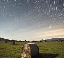 Fields of Stars by Alistair Wilson