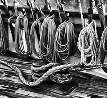 Rigging at the Ready by Wendi Donaldson Laird