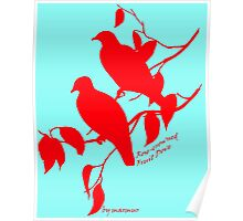 Red Rose-crowned fruit dove Poster