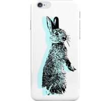 Minty Critter iPhone Case/Skin