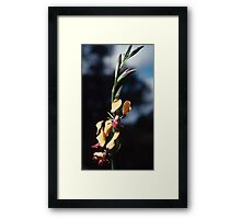 Egg and Bacon ChitteringValley 19820820 0023 Framed Print