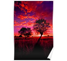 A rural sunset Poster