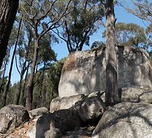 Four Brothers Rocks - Bunyip State Park, Vic by Annie Lamb