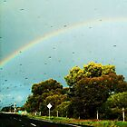 With Rain....Comes Rainbows - Leopold, Victoria, Australia by LittleSilver