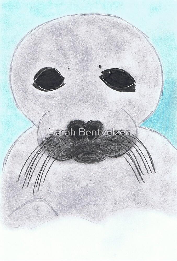 Save the Beautiful Seals by Sarah Bentvelzen