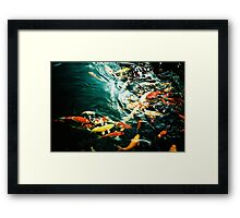 Fish in the pond. Framed Print