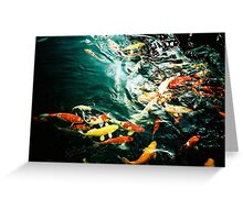 Fish in the pond. Greeting Card