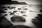 Stepping stones by Vikram Franklin
