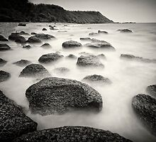 Stepping stones by Vikram Franklin