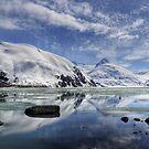 Portage Lake, Alaska by Andreas Mueller