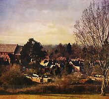 A view to St Barnabas (Worcester) by Lissywitch