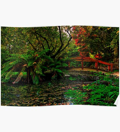 Autumn Colours at Alfred Nicholas Memorial Gardens Poster