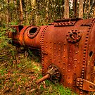 Once Trusted Now Rusted - Mount Irvine, Sydney - The HDR Experience by Philip Johnson