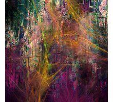 Mauve désir 3 Photographic Print