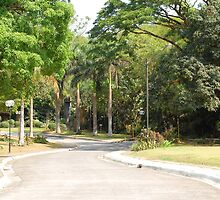 MMLDC pathway in Antipolo, Philippines by walterericsy
