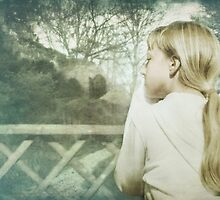 The Other side of the Fence by Lissywitch