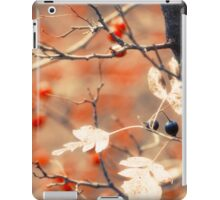 Autumn Forest iPad Case/Skin