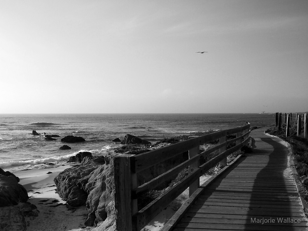 Boardwalk in black and white by Marjorie Wallace