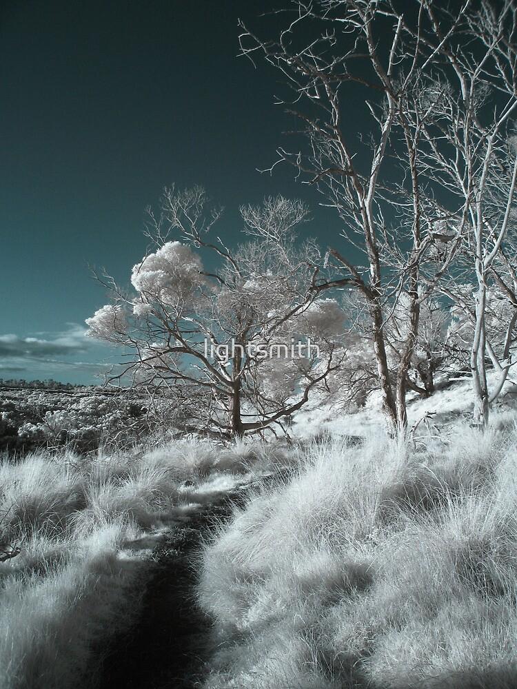 Heaven on Earth - Philip Island Stroll by lightsmith