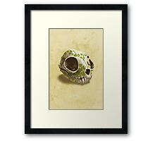 cat skull decorated with wasabi flowers Framed Print