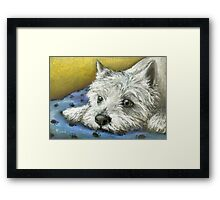 Daydreaming Westie Framed Print