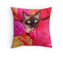 Ragdoll Cat in Bed Throw Pillow
