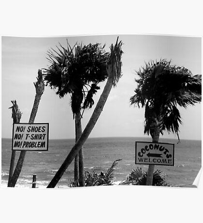 Coconuts Bar : No Problems ! Poster