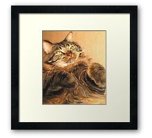 Warm and Fuzzy Framed Print