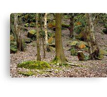 Bramley Fall Woods Canvas Print