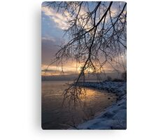 A Curtain of Frozen Branches - Ice Storm Sunrise Canvas Print