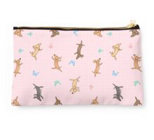 Chasing Butterfly Studio Pouch
