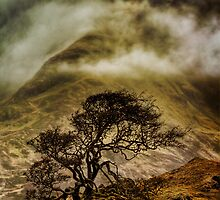Misty Isle (1) by Karl Williams