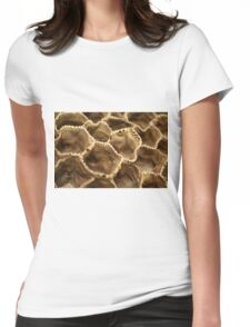 The Matrix Womens Fitted T-Shirt