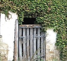 Ivy Gate by ScenerybyDesign