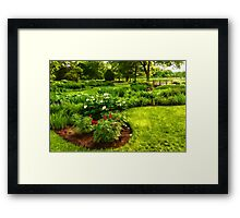 Lush Green Gardens - the Beauty of June Framed Print