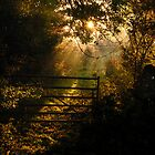 Awakening at Redmire, Wensleydale. by Miffy