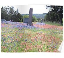 Graveyard in Hill Country Poster