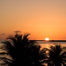 Palm Sunset by JimSanders