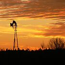 Country Sunset by WTBird